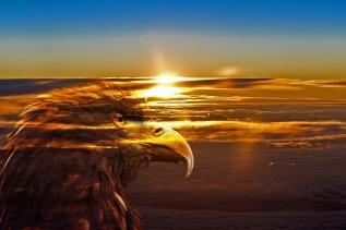 上01 sunrise-1114764_960_720.jpg